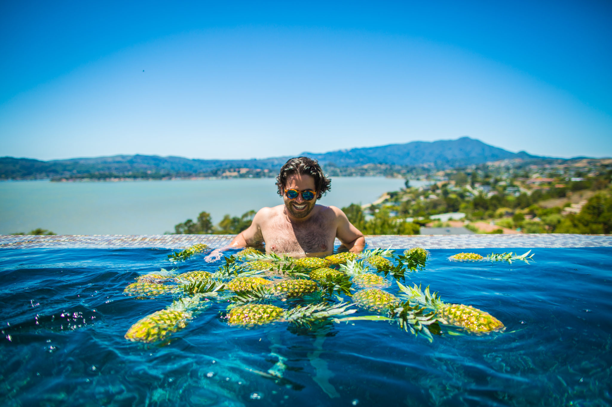 viceroy-press-photo-pool-of-pineapples